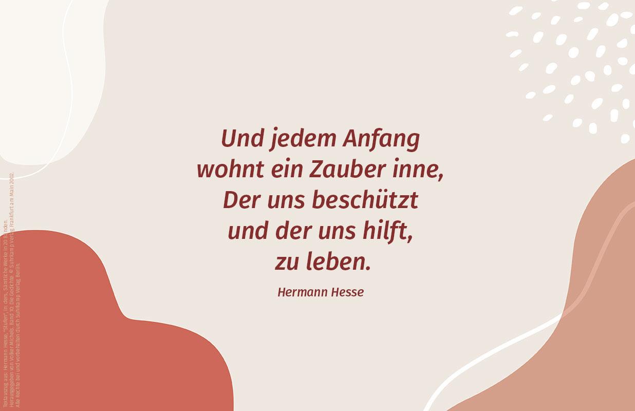 Atilde Design Illustration Hermann Hesse Soest